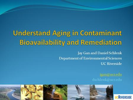Understand Aging in Contaminant Bioavailability and Remediation