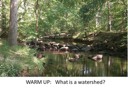 WARM UP: What is a watershed?. Watershed: The area of land that precipitation drains into a river system is known as a watershed. We live in the Chesapeake.