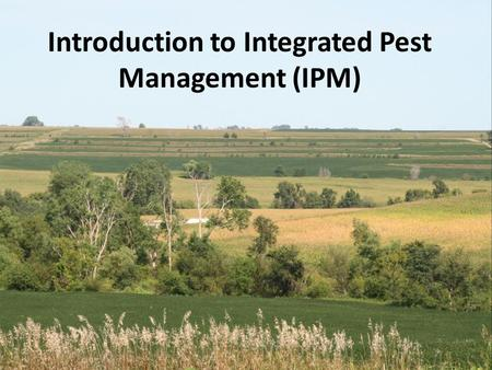 Introduction to Integrated Pest Management (IPM).