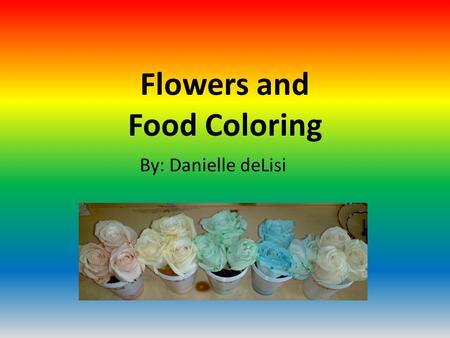 Flowers and Food Coloring