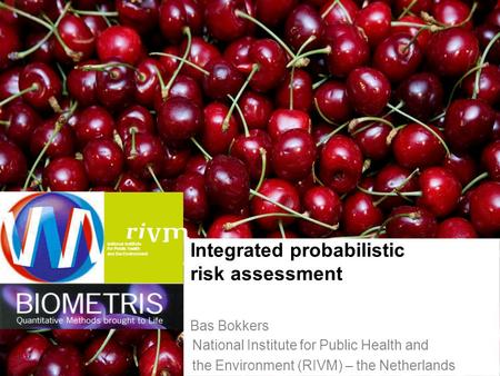 National Institute for Public Health and the Environment 1 Integrated probabilistic risk assessment Bas Bokkers National Institute for Public Health and.