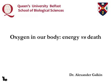 Dr. Alexander Galkin Oxygen in our body: energy vs death Queen's University Belfast School of Biological Sciences.