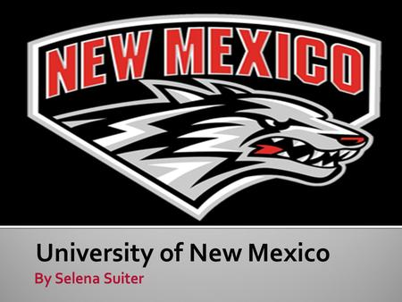 University of New Mexico.  Website: unm.edu  Albuquerque, New Mexico  Distance away from home: 768 miles  Urban.