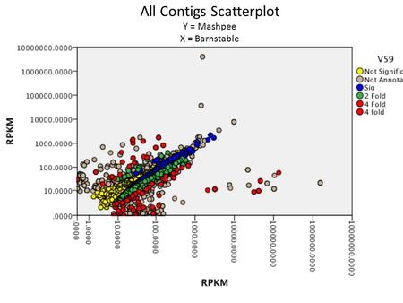 All Contigs Scatterplot Y = Mashpee X = Barnstable.