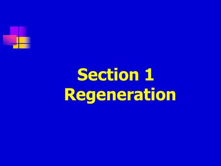 Section 1 Regeneration. Definition: The surviving healthy cells nearby damage proliferate and move for repair.