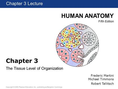 HUMAN ANATOMY Fifth Edition Chapter 1 Lecture Copyright © 2005 Pearson Education, Inc., publishing as Benjamin Cummings Chapter 3 Lecture Chapter 3 The.