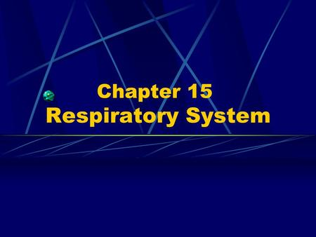 Chapter 15 Respiratory System. 1. Components ---nose ---pharynx ---larynx ---trachea ---bronchi ---lung.