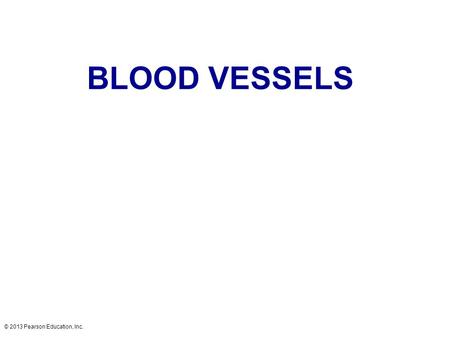 BLOOD VESSELS © 2013 Pearson Education, Inc..