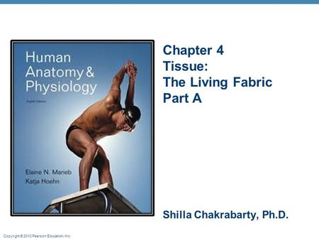 Copyright © 2010 Pearson Education, Inc. Chapter 4 Tissue: The Living Fabric Part A Shilla Chakrabarty, Ph.D.
