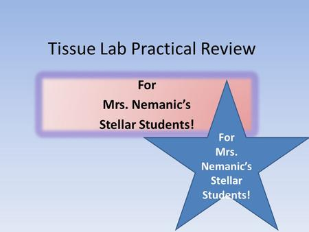 Tissue Lab Practical Review For Mrs. Nemanic's Stellar Students! For Mrs. Nemanic's Stellar Students!
