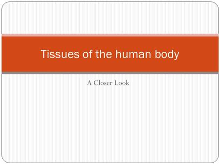 A Closer Look Tissues of the human body. Epithelial Tissues The lining, covering and glandular tissue of the body. Functions include: Protection. Absorption.