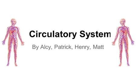 Circulatory System By Alcy, Patrick, Henry, Matt.
