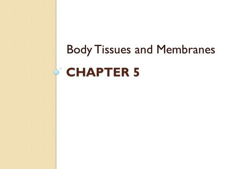 CHAPTER 5 Body Tissues and Membranes. What are tissues? Cells are organized into groups and layers called TISSUES Each tissue is composed of similar cells.