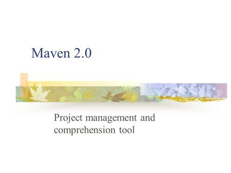 Maven 2.0 Project management and comprehension tool.