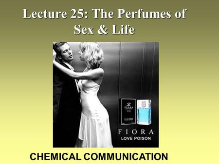 Lecture 25: The Perfumes of Sex & Life CHEMICAL COMMUNICATION.