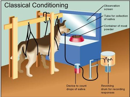 Classical Conditioning. A. Definitions 1.Classical conditioning: learning that takes place when originally neutral stimulus comes to produce a conditioned.