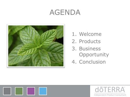 AGENDA Welcome Products Business Opportunity Conclusion.