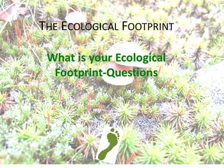 T HE E COLOGICAL F OOTPRINT What is your Ecological Footprint-Questions.