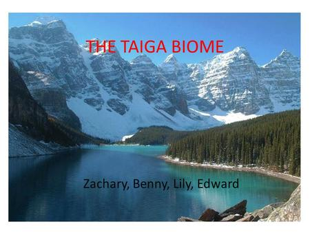 THE TAIGA BIOME Zachary, Benny, Lily, Edward. TABLE OF CONTENTS MAP OF THE TAIGA INTRODUCTION TO THE TAIGA ANIMALS PLANTS HUMAN INFLUENCES.