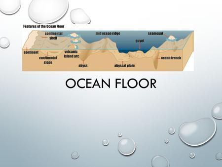 OCEAN FLOOR. COMMON CORE/ESSENTIALSTANDARD #: 8.E.1UNDERSTAND THE HYDROSPHERE AND THE IMPACT OF HUMANS ON LOCAL SYSTEMS AND THE EFFECTS OF THE HYDROSPHERE.