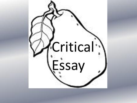 Critical Essay. Today's plan What are central concerns and line of thought? Common problems Ways to plan your essay Linking your paragraphs Look at style.
