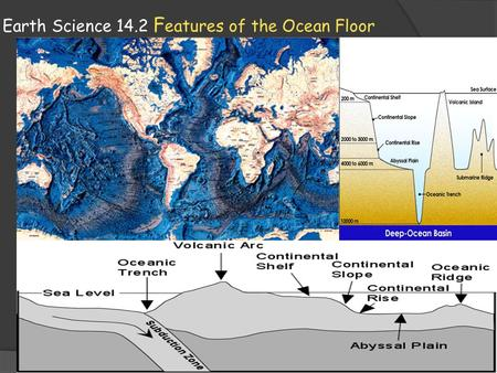 Earth Science 14.2 F eatures of the Ocean Floor. Ocean Floor features Oceanographers studying the topography of the ocean floor have divided it into three.