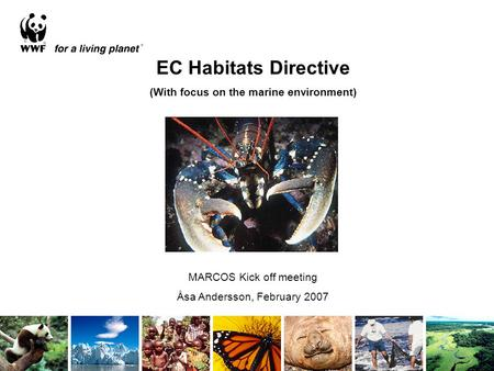 EC Habitats Directive (With focus on the marine environment) MARCOS Kick off meeting Åsa Andersson, February 2007.