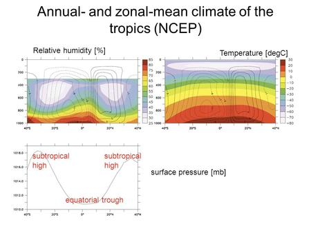 Annual- and zonal-mean climate of the tropics (NCEP) Relative humidity [%] Temperature [degC] surface pressure [mb] equatorial trough subtropical high.