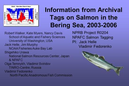 Information from Archival Tags on Salmon in the Bering Sea, 2003-2006 Robert Walker, Kate Myers, Nancy Davis School of Aquatic and Fishery Sciences University.
