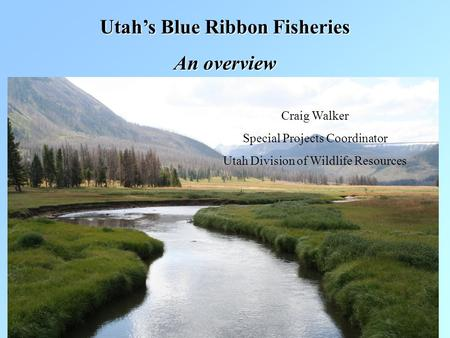 Utah's Blue Ribbon Fisheries An overview Craig Walker Special Projects Coordinator Utah Division of Wildlife Resources.