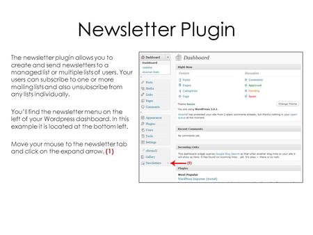 Newsletter Plugin The newsletter plugin allows you to create and send newsletters to a managed list or multiple lists of users. Your users can subscribe.