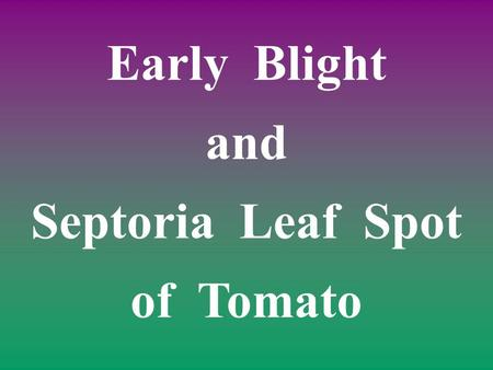 Early Blight and Septoria Leaf Spot of Tomato. Sources of Pathogen Seed and transplants. Spores dispersed by wind or water. Crop debris.