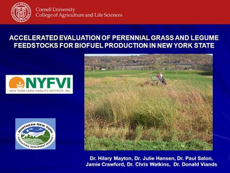 Dr. Hilary Mayton, Dr. Julie Hansen, Dr. Paul Salon, Jamie Crawford, Dr. Chris Watkins, Dr. Donald Viands ACCELERATED EVALUATION OF PERENNIAL GRASS AND.