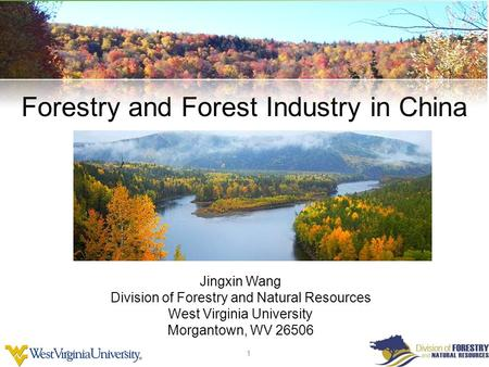 1 1 Wood Science and Technology Forestry and Forest Industry in China Jingxin Wang Division of Forestry and Natural Resources West Virginia University.