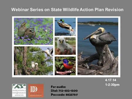 Webinar Series on State <strong>Wildlife</strong> Action Plan Revision 4.17.14 1-2:30pm For audio: Dial: 712-432-1500 Passcode: 882578#