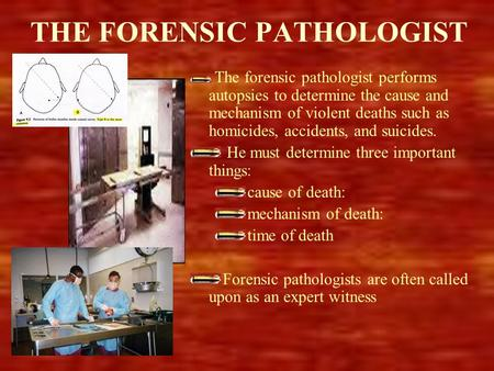 THE FORENSIC PATHOLOGIST The forensic pathologist performs autopsies to determine the cause and mechanism of violent deaths such as homicides, accidents,
