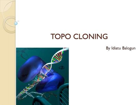 TOPO CLONING By Idiatu Balogun. INTRODUCTION The structure of DNA is a double-stranded helix, where in the four bases, adenine, thymine, guanine, and.