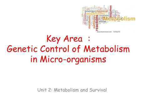 Key Area : Genetic Control of Metabolism in Micro-organisms Unit 2: Metabolism and Survival.