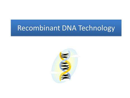 Recombinant DNA Technology. Technique that allows DNA to be combined from different sources – DNA code universal – Foundation of genetic engineering.