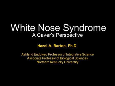 White Nose Syndrome A Caver's Perspective Hazel A. Barton, Ph.D. Ashland Endowed Professor of Integrative Science Associate Professor of Biological Sciences.