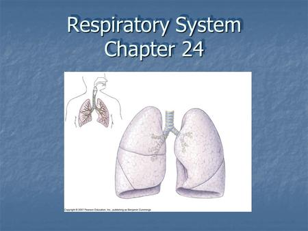 Respiratory System Chapter 24. The main function of the respiratory system is to supply oxygen to, & eliminate carbon dioxide from the body In order to.