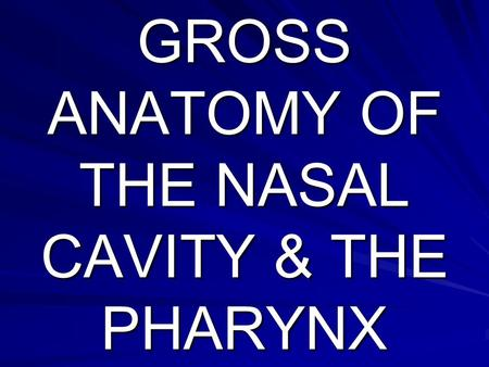 GROSS ANATOMY OF THE NASAL CAVITY & THE PHARYNX
