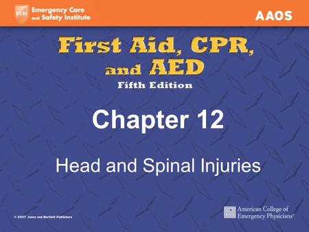 Chapter 12 Head and Spinal Injuries. Head Injuries Scalp wounds Skull fracture Brain injuries.