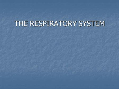 THE RESPIRATORY SYSTEM. RESPIRATION The exchange of gases between the atmosphere, lungs, blood, and tissues.