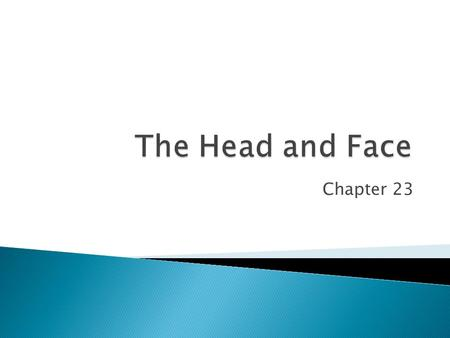 Chapter 23.  KEY CONCEPT The head can be divided into two anatomical groups; the face and the cranium. The face includes the structures of the eye, nose,