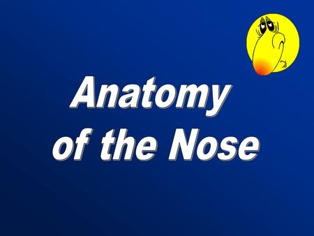 Anatomy of the Nose.