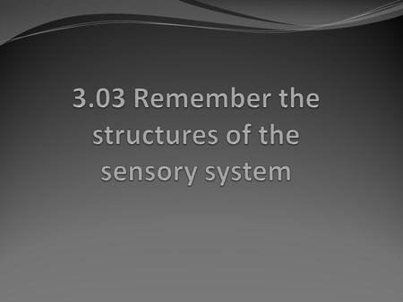 Essential questions What are the structures of the sensory system? 3.03 Remember the structures of the sensory system2.