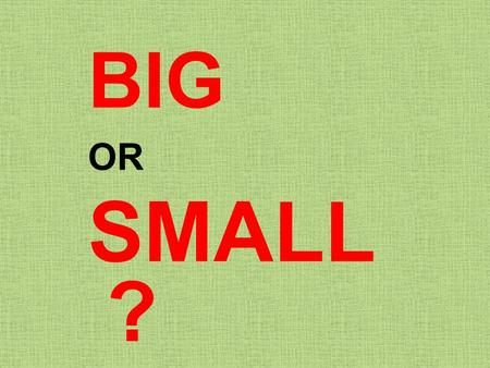 BIG OR SMALL?.