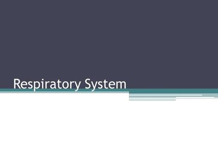 Respiratory System. Structures & Functions The organs of the respiratory system include – Nose – Pharynx – Larynx – Trachea – Bronchi – Lungs Accessory.