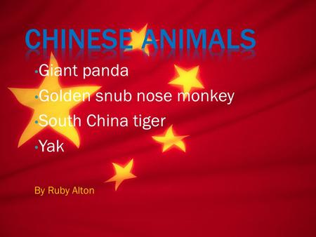 Giant panda Golden snub nose monkey South China tiger Yak By Ruby Alton.